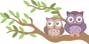 illustration de deux chouettes sur une branche